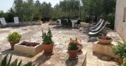 Affitto trulli abitabili – Cisternino (Brindisi)