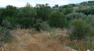 Vendita terreno – Contrada Martellato, Cisternino (Brindisi)
