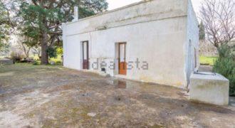 Vendita Casolari e lamie – Contrada Ulmo, Valle D'Itria – Alto Salento, Ceglie Messapica (Brindisi)