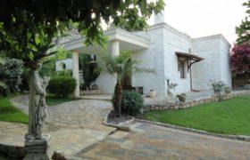 Affitto villa, Cisternino (Brindisi)