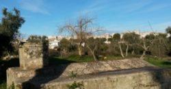 Vendita Trulli e lamie rustici – Contrada Mesola, Valle D'Itria – Alto Salento, Ceglie Messapica (Brindisi)