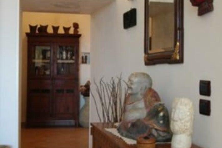 Vendita Trulli abitabili – Contrada Pico, Valle D'Itria – Alto Salento, Cisternino (Brindisi)