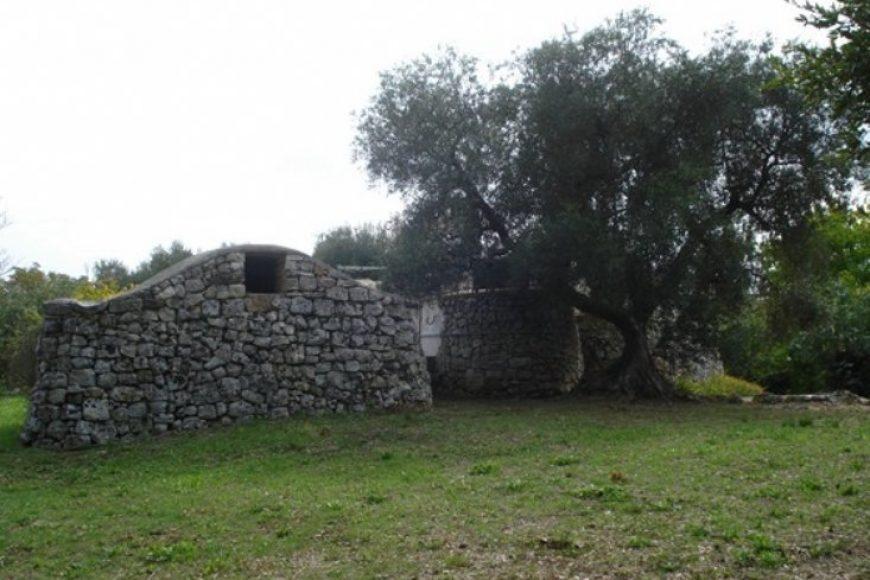 Vendita Trulli abitabili – Contrada Lamianuova, Ceglie Messapica (Brindisi)