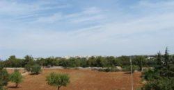 Vendita terreno – Contrada Specchiaruzzo, Ostuni (Brindisi)