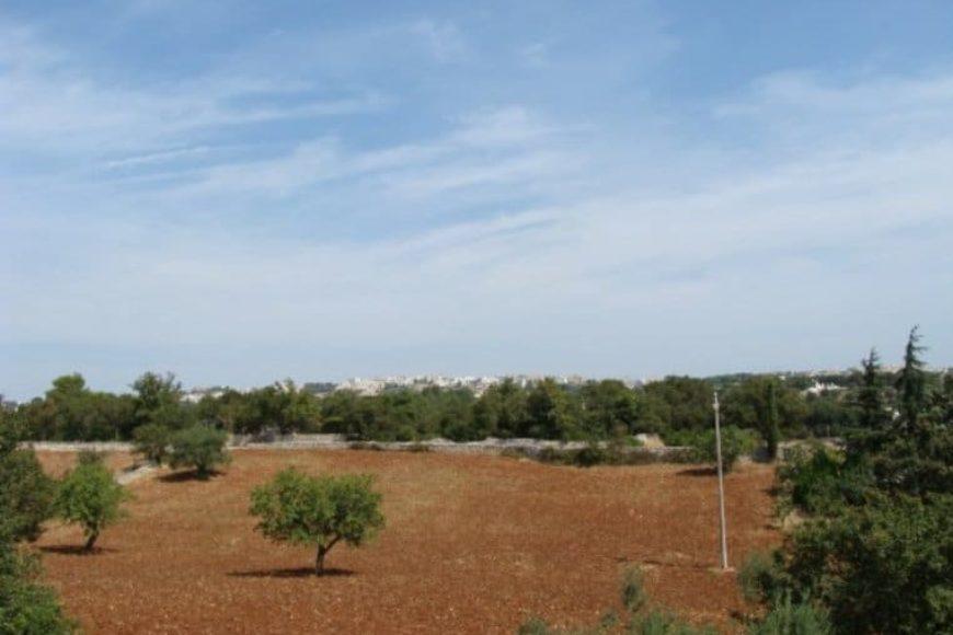 Vendita terreno – Contrada Specchiaruzzo, Valle D'Itria , Ostuni (Brindisi)