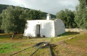 Vendita Trulli e lamie rustici – Contrada Monte Pizzuto , Fasano (Brindisi)