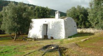 Vendita trulli e lamie rustici – Contrada Monte Pizzuto, Fasano (Brindisi)