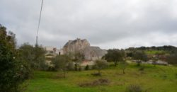 Vendita Masserie – Contrada Cupina, Valle D'Itria – Alto Salento, Martina Franca (Taranto)