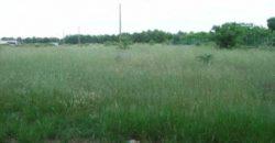 Vendita Zona mare terreno – Contrada Mindella, Carovigno (Brindisi)