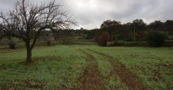 Vendita terreno – Contrada Lapadula, Valle D'Itria – Alto Salento, Ostuni (Brindisi)