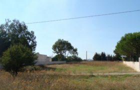 Vendita terreno – Contrada Gorgognolo – zona mare, Ostuni (Brindisi)
