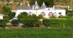 Vendita Trulli abitabili – Contrada Foggia di Sauro, Valle D'Itria , Ostuni (Brindisi)