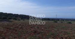 Vendita villa – Contrada Monte Pizzuto, Fasano (Brindisi)