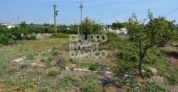 Vendita Trulli abitabili – Strada difesa/Via Cisternino, Martina Franca (Taranto)