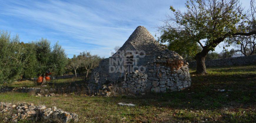 Vendita Trulli e lamie rustici – Contrada San Salvatore, Cisternino (Brindisi)