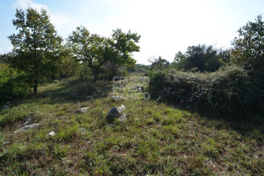 Vendita terreno – Contrada Foggia Nuova, Ostuni (Brindisi)