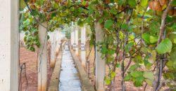 Vendita villa – Strada Provinciale Ceglie – Ostuni, Ceglie Messapica (Brindisi)