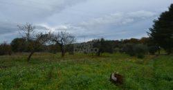 Vendita trulli e lamie rustici – Contrada Chiobbica, Ostuni (Brindisi)
