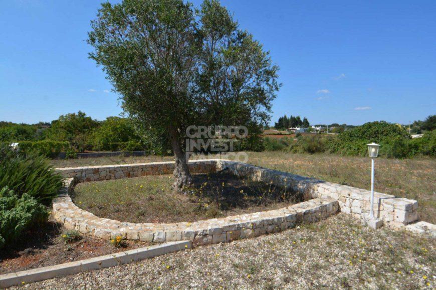 Vendita casolari e lamie – Strada Casavola, Martina Franca (Taranto)