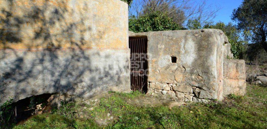 Vendita casolari e lamie – Contrada Zilapampini, Ceglie Messapica (Brindisi)