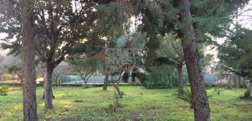 Vendita villa – Contrada Palmo, Francavilla Fontana (Brindisi)
