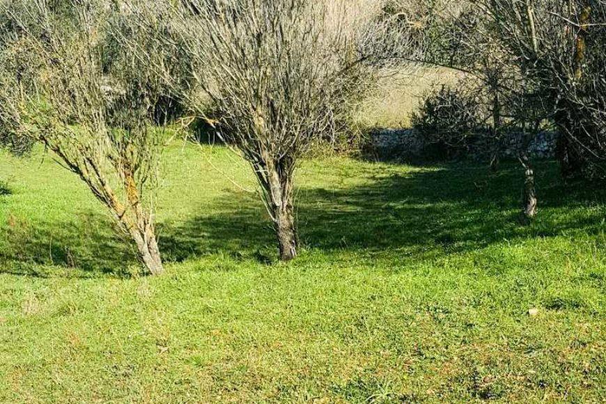 Vendita villa – Via Monte la Croce, Cisternino (Brindisi)