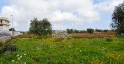 Vendita terreno – Contrada Colucci, Cisternino (Brindisi)