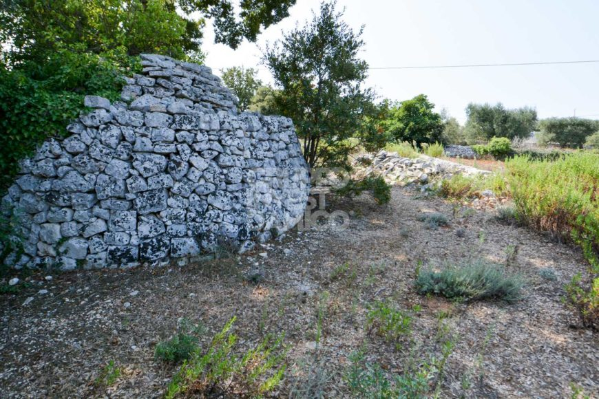 Vendita terreno – Contrada Caranna, Cisternino (Brindisi)