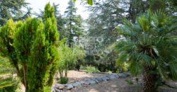 Vendita trulli abitabili – Contrada Chirulli Grande, Martina Franca