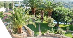 Vendita villa di prestigio – Contrada Monte la Morte, Ostuni (Brindisi)