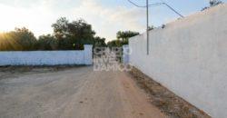 Vendita Masserie – Contrada Schiavone, Ostuni (Brindisi)