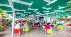 Vendita attività commerciale (Bar) – Località Specchiolla, Ostuni (Brindisi)
