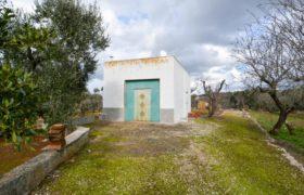 Vendita casolari e lamie – Contrada Farfara, Ceglie Messapica (Brindisi)