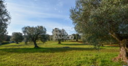 Vendita terreno – Contrada Angelo di Maglie, Ceglie Messapica (Brindisi)