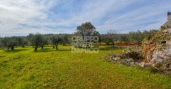 Vendita trulli e lamie rustici – Contrada Minetta/Saettone, Cisternino (Brindisi)