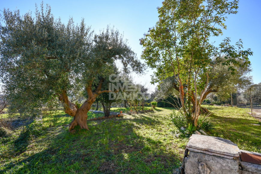 Vendita villa – Contrada Monte, Cisternino (Brindisi)