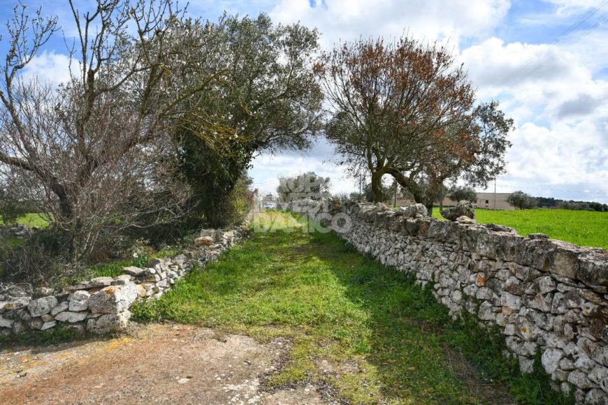 Vendita trulli e lamie rustici – Contrada Luco, Martina Franca (Taranto)