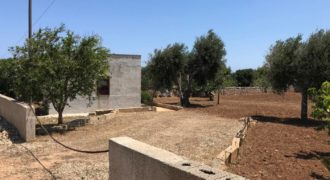 Vendita trulli e lamie rustici – Contrada Torre Incina, Monopoli (Bari)