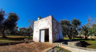 Vendita Casolari e lamie – Contrada Montecalvo, Valle D'Itria – Alto Salento, Ceglie Messapica (Brindisi)