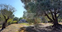 Vendita trulli e lamie rustici – Contrada Angelo di Maglie, Ceglie Messapica (Brindisi)