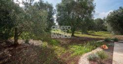 Vendita casolari e lamie – Contrada Lamatroccola, Ostuni (Brindisi)