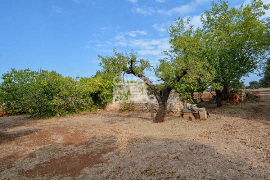 Vendita trulli e lamie rustici – Contrada Grattile – San Giacomo, San Vito dei Normanni (Brindisi)
