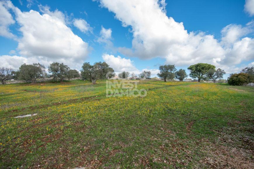Vendita terreno – Contrada Calabrese, Cisternino (Brindisi)