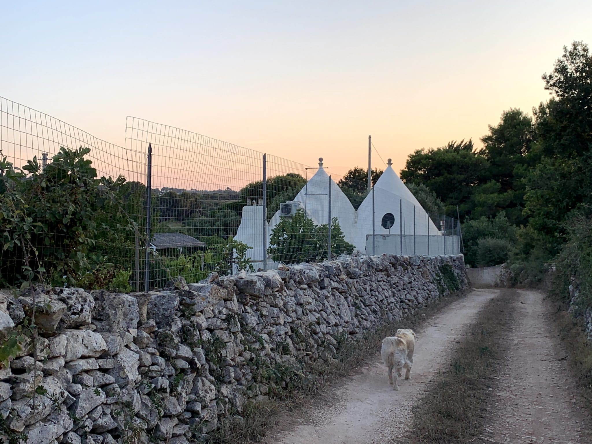 Vendita trulli abitabili – Contrada Cavallo, Ostuni (Brindisi)