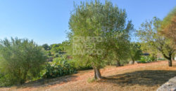 Vendita trulli e lamie – Contrada Cavallerizza, Ostuni (Brindisi)
