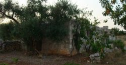 Vendita Trulli e lamie rustici – Contrada Giovanni Fasano, Valle D'Itria , Ostuni (Brindisi)