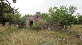 Vendita Trulli e lamie rustici – Contrada Specchia Tarantina, Martina Franca (Taranto)